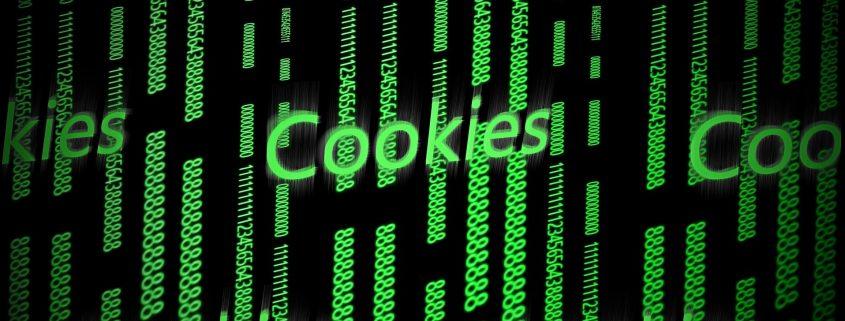 ¿Qué tipos de cookies existen?